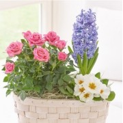 Blossoming Pastels Basket