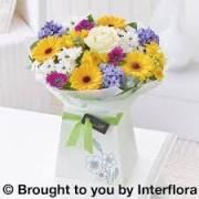 Joyful Spring Gift Box